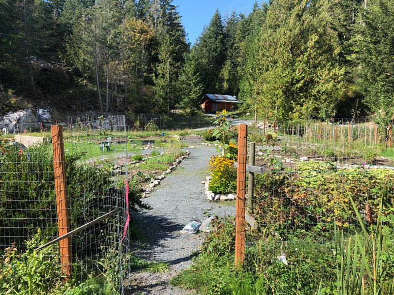 Beautiful gardens at Finn Bay Farm